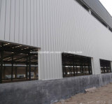 Здание стальной структуры очень самомоднейшей конструкции (wsdss309)