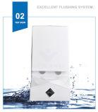 Weidansi en céramique lavent vers le bas la toilette d'une seule pièce de courroie (WDS-T6104)