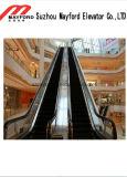 Vvvf, das Innenrolltreppe mit Sicherheitsglas fährt