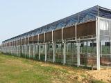La garniture de refroidissement de peigne évaporatif de miel de Climat-Contrôle de ferme avicole et de serre chaude de type la plus neuve