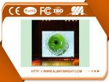 Pantalla de visualización a todo color de interior comercial de LED P6 de la publicidad