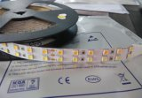 o diodo emissor de luz Leisten/de 5050 WW+W dual a luz de tira branca do diodo emissor de luz