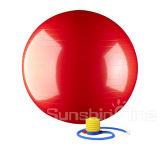 Bola resistente de la terapia física de la estabilidad del ejercicio de la fuerza estática de la aptitud del resbalón