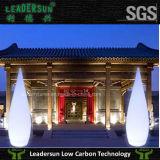 Moderne Staand lamp van de Kleur van Leadersun de Dubbele ldx-Fl03