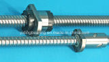 Hochleistungs- CNC-Maschinen-Kugel-Schraube Sfu10020-4
