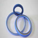 Sorgente Energized Seals Highquality e Competitve Price
