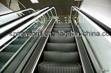 Эскалатор управлением Vvvf 30 градусов крытый