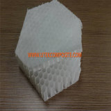 30mm Thickness PP Honeycomb Core for Van Vehicle