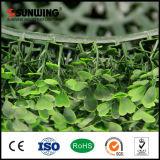 Sfera artificiale del recinto del Topiary del Boxwood del giardino all'ingrosso di alta qualità