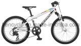 2017 vollkommenes heißes verkaufen20 Fahrrad des Zoll-MTB/Gebirgsfahrrad/Gebirgsfahrräder