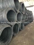 Materielle runde Stahldrähte