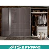 De Garderobe van de Slaapkamer van de Schuifdeur van het glas (ais-W024)