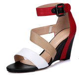 New Collection Fashion High Heels Sandálias para mulher Wedge (HS17-80)