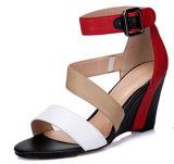 Nuevas sandalias de la cuña de las mujeres de los altos talones de la manera de la colección (HS17-80)