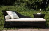 Mobilia esterna del giardino del rattan impostata (BL-801)