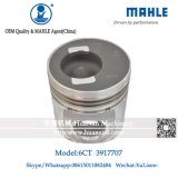 6CT300 6CT 6ctaa8.3 6D114 Mahle Piston