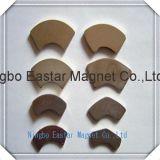 高品質の特別な形の常置ネオジムの磁石