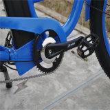 Bicicleta gorda do cruzador da praia do pneu com assistente elétrico (RSEB-506)
