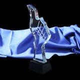 Trofeo di cristallo di figura del pollice