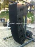 """Q1 si raddoppiano 10 """" riga sistema di schiera, riga schiera, PRO audio, sistema esterno"""