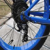 La mayoría de la bici eléctrica 48V 500W (RSEB-505) del neumático gordo popular