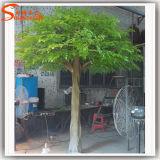 Evergreen 12f artificial Banyan Tree para la decoración del hogar