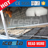 Alta velocità 10 tonnellate di blocco di ghiaccio che fa pianta