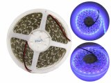 Luz ligera impermeable universal de la cinta de /LED de los kits de la raya del RGB LED