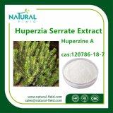 Fabrik liefern 100% den reinen natürlichen Huperzia Serrata Auszug Huperzine ein Puder 98% durch HPLC