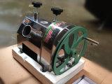 Machine van de Maalmachine van het Suikerriet van de hoge Efficiency de Hand