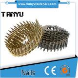 chiodi del tetto della bobina 15degree, di rifornimento regolare dei chiodi del 1 1/4 per esempio tetto della bobina