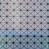 2017装飾的な袋のための最も新しい印刷されたPU PVC革(W200)