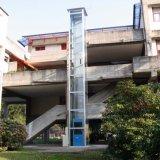 Ascenseur résidentiel de passager d'homme de levage commercial électrique de maison