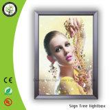 Rectángulo ligero delgado de Lightbox /LED de la venta caliente de Guangdong