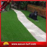 إقامات عشب اصطناعيّة عشب اصطناعيّة لأنّ [شلدكر] تسهيل مرج اصطناعيّة