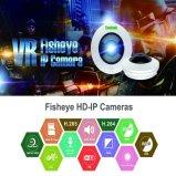 Cámara IP Fisheye CCTV con SD