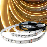 5m/Roll 60LED por tira del contador IP65 5050 RGB LED