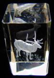 3D Laser graveerde de Lege K9 Kubus van het Glas van het Kristal voor Herinnering