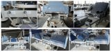 AG-C101A02 mit starker Matratze mit Stuhl-Positions-justierbarem Bett