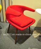 최신 판매 섬유 유리 여가 의자 (EC-027)