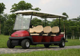 熱い販売安く8人の乗客の電気ゴルフバギー