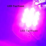 Luz LED UV 365nm 25W