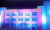 LED 화소 끈 건물 훈장 점화