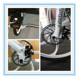 Vélo de montagne électrique d'usine de la Chine
