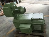motor eléctrico de la C.C. 660V para la máquina pesada industrial