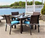 Vector de cena de la rota al aire libre y muebles de mimbre del patio de la silla