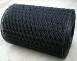 Compensation de fil hexagonale galvanisée enduite par PVC de compensation de fil de poulet