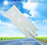 giardino di energia solare 20W che illumina tutti in una lampada di via del LED