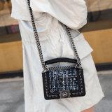 2017年のHotsaleの方法女性ハンド・バッグの女性ハンドバッグ(0114)