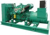 300kw 최고 침묵하는 디젤 엔진 발전기